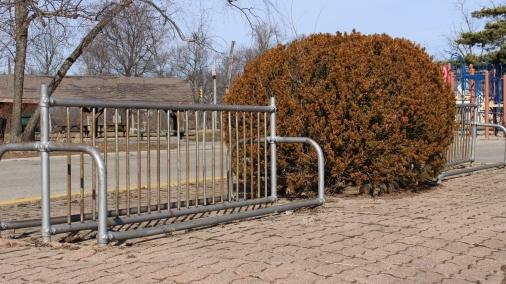 Bike Rack at Buley Center