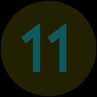 Informant 11