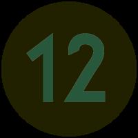 Informant 12