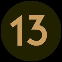 Informant 13yel