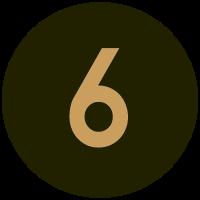 Informant 6