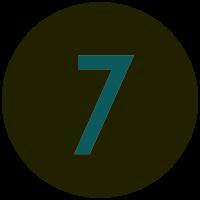 Informant 7