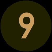 Informant 9ye